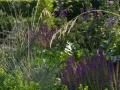 Hortus Tuinontwerp - Gezinstuin