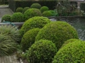 Hortus Tuinontwerp - Villatuin